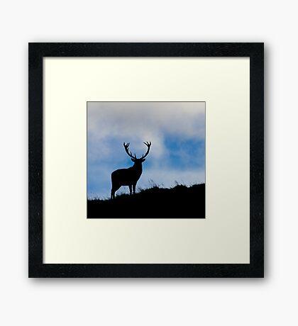 Proud Master Framed Print