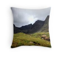 Corrie Lagan Throw Pillow