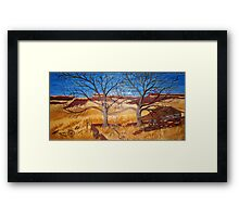 New Mexico Shanty Framed Print