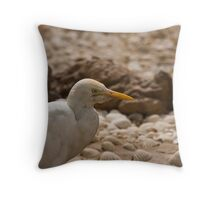 Cattle Egret head shot Throw Pillow