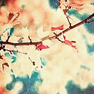 Pink leafs on textured sky by Andreka