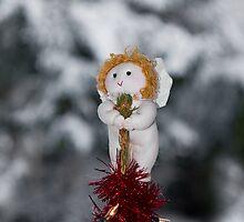 Christmas Fairy by Sue Robinson