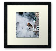 Robin and Snow Framed Print