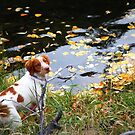 """""""Remington"""" ~ by Fotography by Felisa ~"""