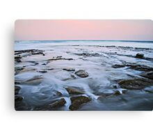 Mercurial Merewether Canvas Print