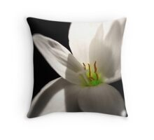 Light From Above Throw Pillow