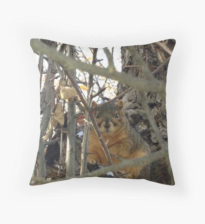 A Squirrel After A Snowstorm  Throw Pillow