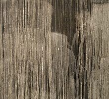 Steir by Matt Steele