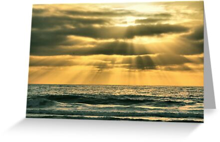 Mission Beach Evening by Barbara  Brown
