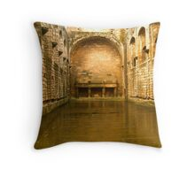 Linlithgow Palace; the great banquet hall Throw Pillow