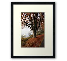 Wandering Limbs Framed Print