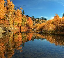 Susan River 11-3-12 by James Eddy