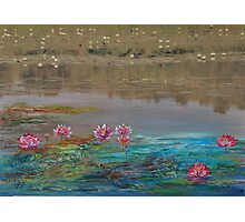 surreal waterlillies Photographic Print