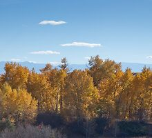 Big Timber creek autumn color by Rob  Holcomb