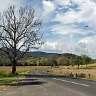 Road from Kyogle to Lismore, New South Wales by Gregory Hale