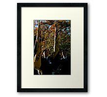 Bearers Framed Print