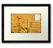 floral pattern on postcard Framed Print