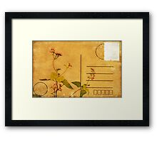 floral pattern on postcard Framed Print