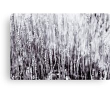 Grey Foliage Wall Art Canvas Print