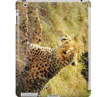 cheetah resting  iPad Case/Skin