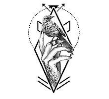 Bird In The Tattooed Hand (White) Photographic Print