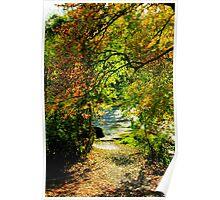 Autumn Riverside Poster