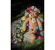Bear Stories: Have a Beary Happy Easter Photographic Print