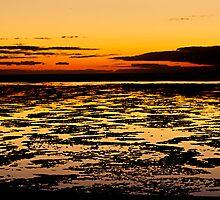 Sunrise over the lagoon - Lady Elliot Island by Jaxybelle