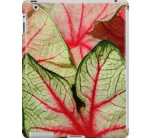 Caladium Leaves   ^ iPad Case/Skin