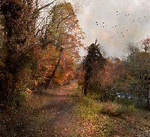 Autumn Path by John Rivera