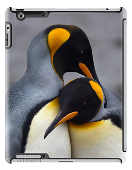 King Penguins in Love iPad Case by Krys Bailey