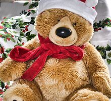 Teddy's Ready For Christmas by lynn carter