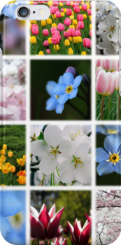 Spring Flowers Montage 1 by photonista