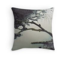 Stick in the Mud Throw Pillow