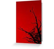 Bird Red Greeting Card