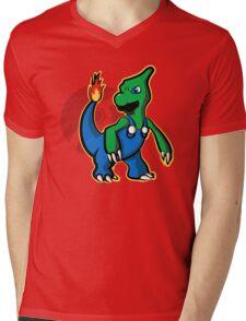 Charigi Mens V-Neck T-Shirt