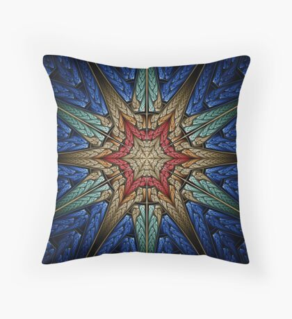 Embroidered Starburst Throw Pillow
