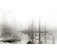 Just this morning at the pond Photographic Print