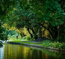 Evening along the Canal by Sarah Walters