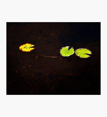 PacMan Photographic Print