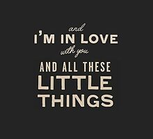 One Direction Little Things Lyrics by Hannah Julius