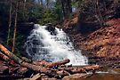 F. L. Ricketts Falls Cascading Into Spring by Gene Walls