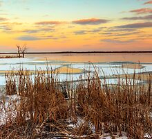 Sunset at Emiquon National Wildlife Refuge by bengraham