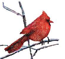 Redbird by MStrause