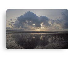 Butterfly reflections: Crosby Beach, nr Liverpool Canvas Print