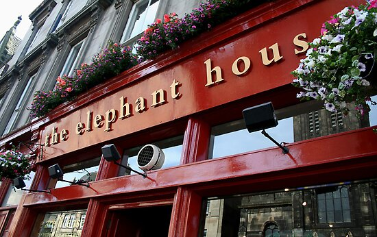 The Elephant House by snhood