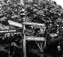 Road Sign #1 by A.David Holloway