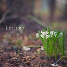 Let it go by netza