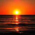 Bright Skies - Sunset Art by Sharon Cummings