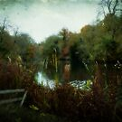 Vinters Park Lake by Kim Slater